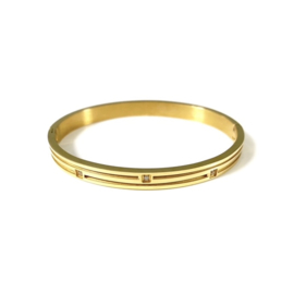 Stainless steel bangle in goud | Squares