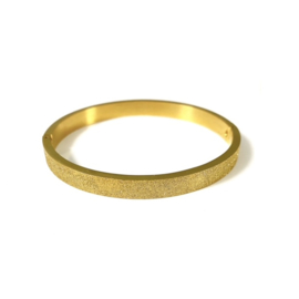 Stainless steel bangle in goud | Glitter Big