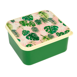Lunchbox in plastic 'Tropical Palm'