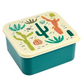 Lunchbox in plastic 'Desert in Bloom'