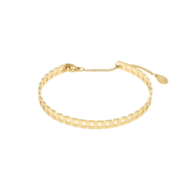 Stainless steel armbandje  in goud | Linked