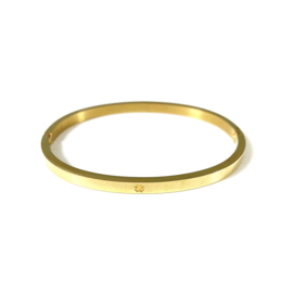 Stainless steel bangle in goud | Good Luck Small