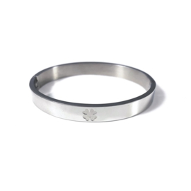 Stainless steel bangle in zilver | Good Luck Big
