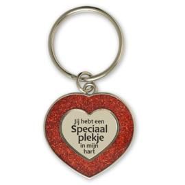 Sleutelhanger hartje 'Jij hebt een speciaal plekje in mijn hart'