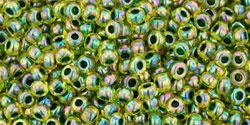 Rocailles 11/0 Inside-Color Rainbow Jonquil Forest Green Li