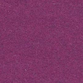 Naaldvilt  Fuchsia