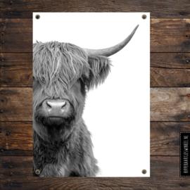 Tuinposter XL hooglander zwart/wit per 2 stuks