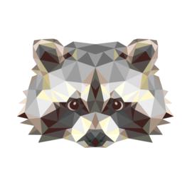 Wasbeer geometrisch kleur