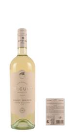 2019 Epicuro Terre Siciliane - Pinot Grigio