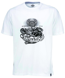 DICKIES DODSON T-SHIRT WHITE