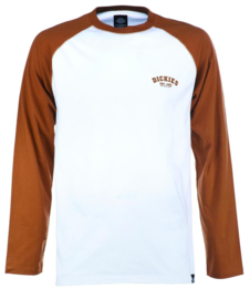 DICKIES BASEBALL T-SHIRT BROWN DUCK