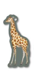 Label - giraffe