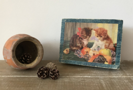 Antiek bonbon doosje met twee poesjes