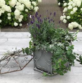Bloempot plantenbak tuindecoratie metalen planthouder vogeltje