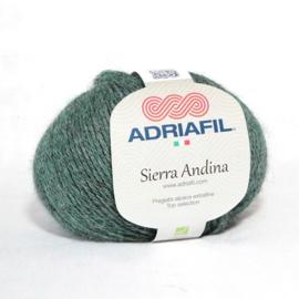 Sierra Andina 15