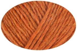 Kleur apricot 1704