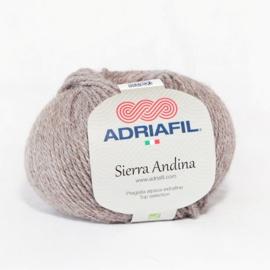 Sierra Andina 99