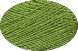 Einband 1764 vivid green