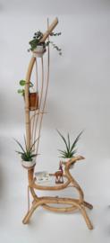 Rotan plantenhouder met glazen tafel