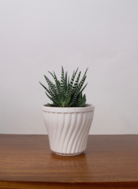 Witte plantenpot draaiprint met rand
