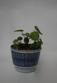 VIntage blauwe bloempot
