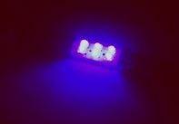 Blauwe 3 LED lampen 31mm 12V, interieur verlichting