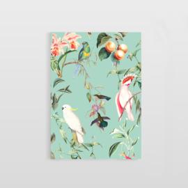 Postcard - BIRDS OF PARADISE SEA MINT