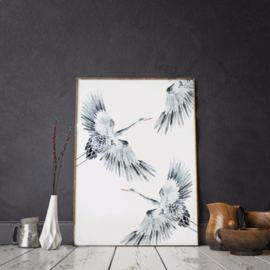 Mini poster A5 - Cranes
