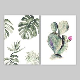 Postcards - TROPIC SET