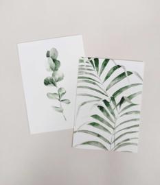 Giftbox - Stationary Botanic Small