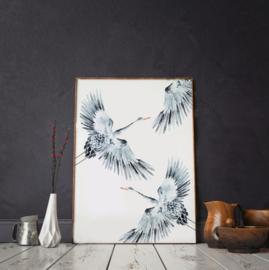 Poster - Cranes - A3