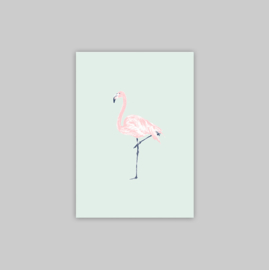 Postcard - FLAMINGO JUNGLE