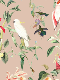 Behang - BIRDS OF PARADISE - peach blush
