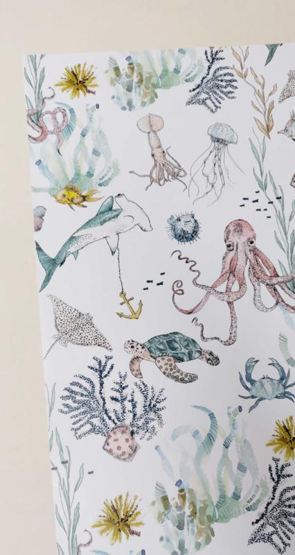 Giftwrap - Underwater Wonders