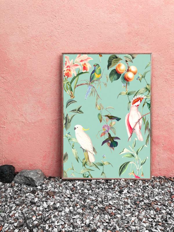 Poster - BIRDS OF PARADISE SEA MINT - A5, A4, A3, A2
