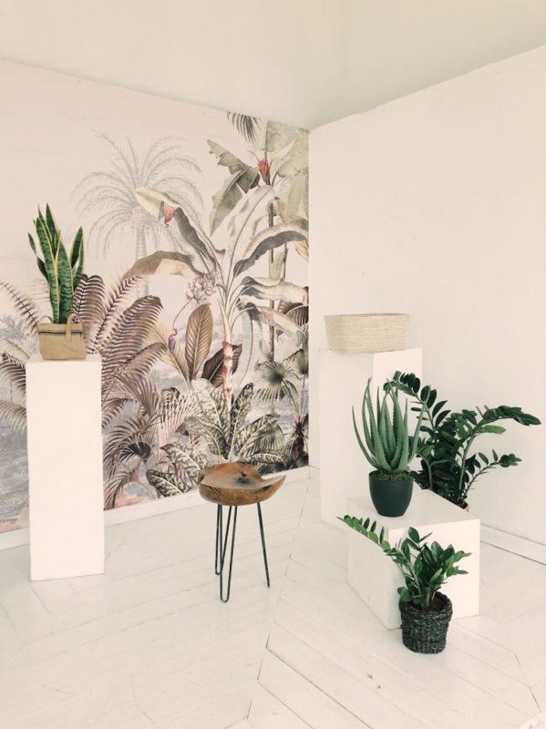 Behang - Wandgrote afbeelding - DREAMY JUNGLE SOFT