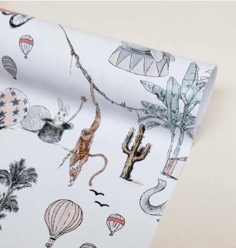 Cadeau papier - Cirque du Fantasy