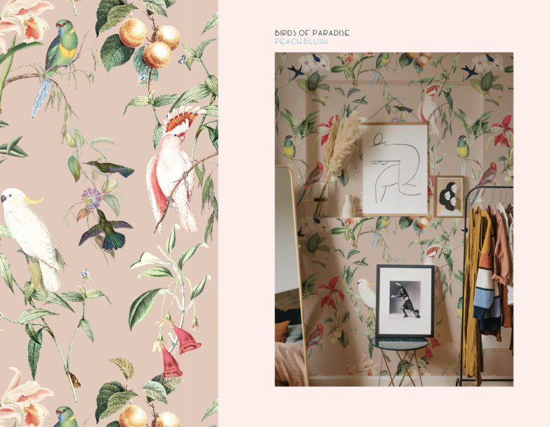 Behang - BIRDS OF PARADISE - peach blush