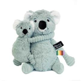 Ptipotos de koala-minth