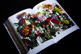 Encyclopedia Of Flowers II - Makoto Azuma & Shunsuke Shiinoki