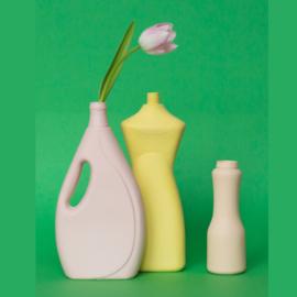Fles vaas #3 - Foekje Fleur
