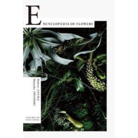 Encyclopedia Of Flowers I - Makoto Azuma & Shunsuke Shiinoki