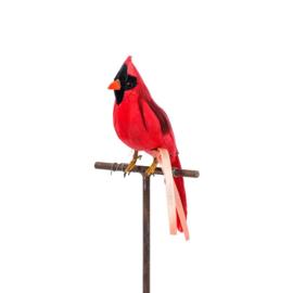 Vogel / Artificial Birds 'Cardinal' - Puebco