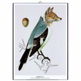 Schilderijtje New Species 'Wolfsklauwier' - De Beeldvink