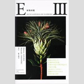 Encyclopedia Of Flowers III - Makoto Azuma & Shunsuke Shiinoki