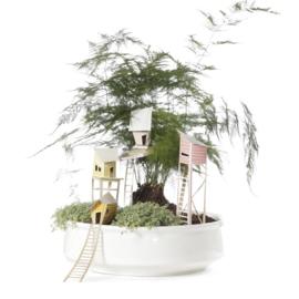 Bouwpakket boomhutjes 'Cottage Town' voor in kamerplant - Ontwerpduo