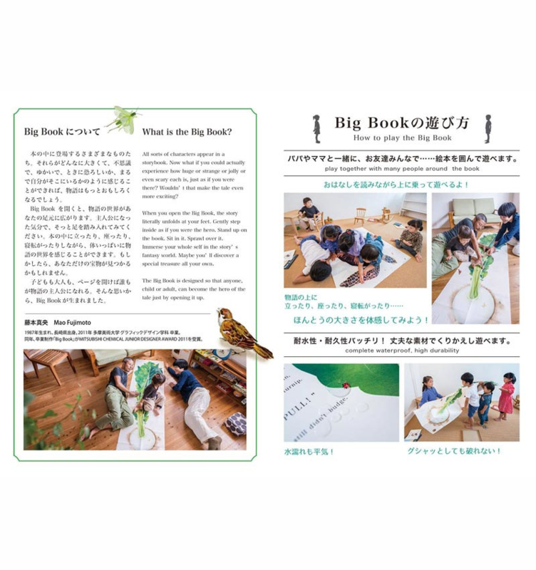 Big Book Series 02: The Giant Turnip