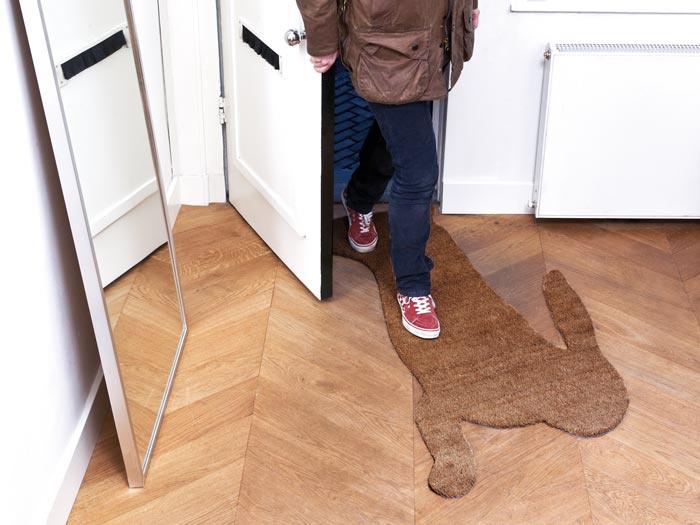 Deurmat 'Hare mat' - Droog