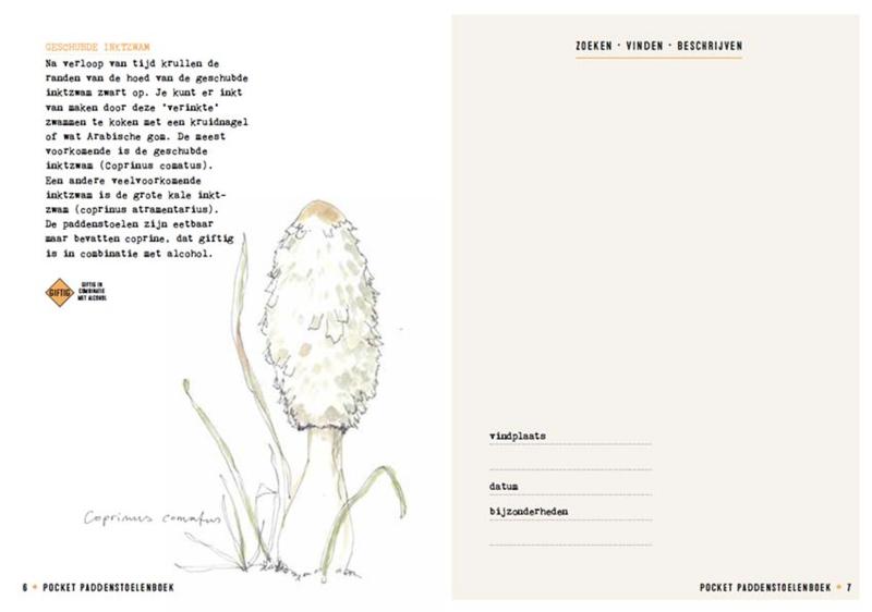 Pocket Paddenstoelenboek - Gerard Janssen