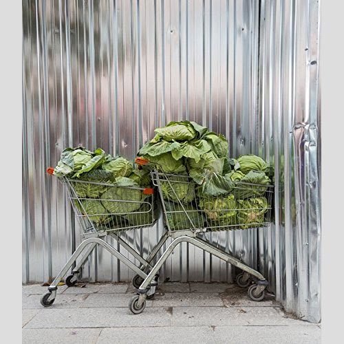 Torsten Schumann - More Cars, Clothes And Cabbages